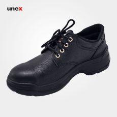 کفش ایمنی ای ترین مشکی
